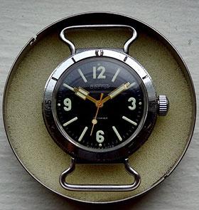 amphibian1969